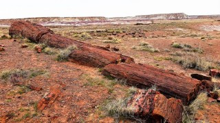 Petrified Forest National Park, AZ