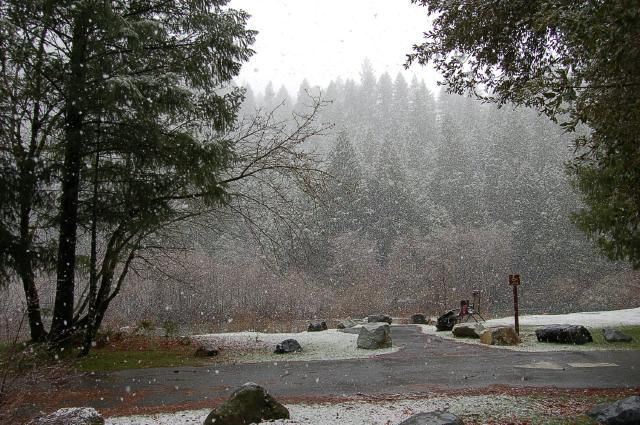 Snow at Indian Valley Campground, CA